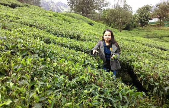 Munnar truly a paradise in south India by Ms. Priyanka Singh